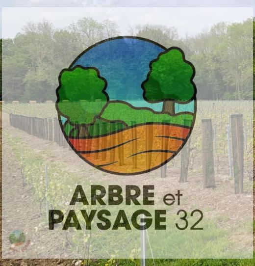 Viticulture : plantation, suivi et taille des arbres en agroforesterie