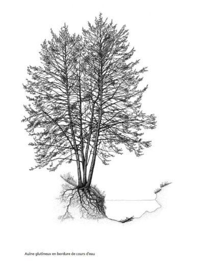 david_dellas_dessins-bota_ap32-2011_page-0012-min